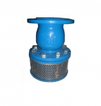 Silent Check Foot Valve